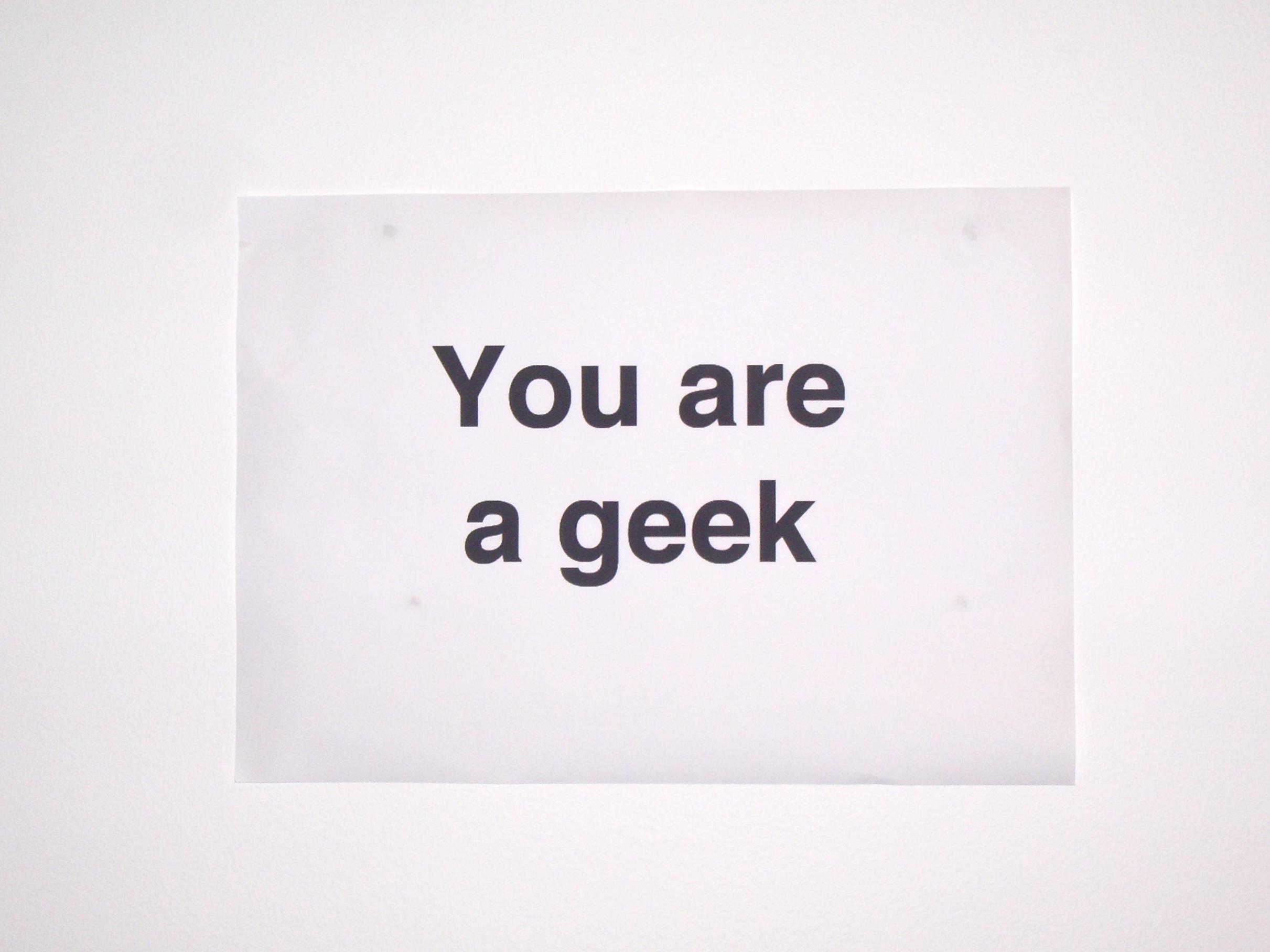 Mon niveau de Geekerie #Défi du mois de novembre jour 25